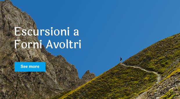 escursioni_forni-avoltri_over