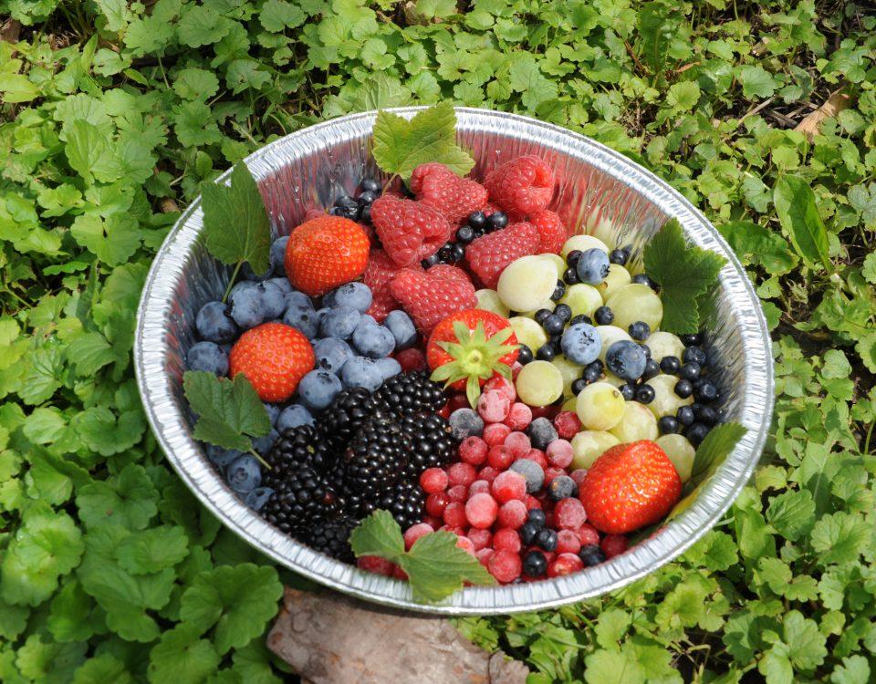 Frutta - romanin Graziano